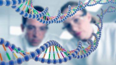 Determining Your Genetic Potential