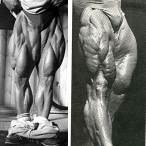 3 Time Tested Methods To Build Tree-Trunk Thighs