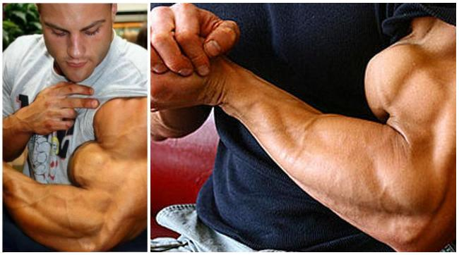 The BEST-Ever Training for Big Biceps & Triceps – 2